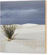White Sands Dark Sky Wood Print by Bob Christopher