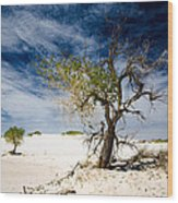 White Sands National Monument #1 Wood Print