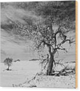 White Sands National Monument 1 Light Mono Wood Print