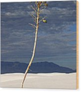 White Sands National Monument 2 White Sands New Mexico Wood Print