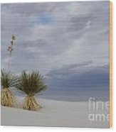 White Sands New Mexico Yucca Plants Wood Print