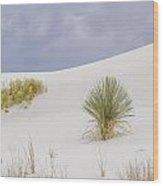 White Sands Tableau Wood Print