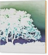 White Silhouette Of Oak Tree Against Blue And Green Watercolor Background Wood Print