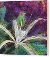 White Spider Flower On Orange And Plum - Vertical Wood Print