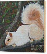 White Squirrel Of Sooke Wood Print