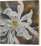 White Star Magnolia Blossom Wood Print