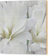 White Star Magnolia Flowers Wood Print