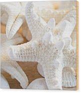 White Starfish 2 Wood Print