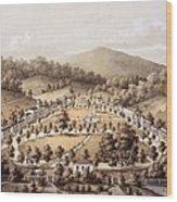 White Sulphur Springs, Montgomery County, Va Wood Print