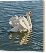 White Swan At Sunset Wood Print