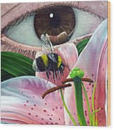 White Tailed Bumble Bee Upon Lily Flower Wood Print