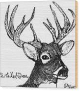 White-tailed Deer Head Wood Print