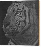White Tiger At Night Wood Print