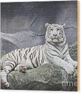 White Tiger On A Rock  Wood Print