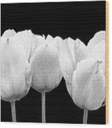 White Tulip Triple On Black Wood Print