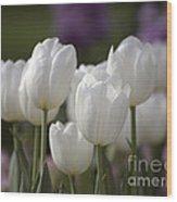 White Tulips 9169 Wood Print