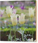 White Tulips In Parisian Garden Wood Print