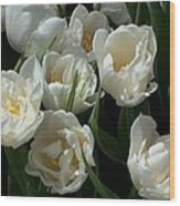 White Tulips In The Garden Wood Print