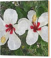 White Twin Hibiscus With Red Veriegation Wood Print