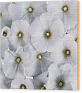White Violets Wood Print