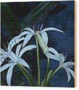 White Water Flower Wood Print