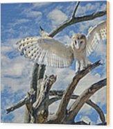 White Wide Wings Wood Print
