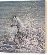 White Wild Horse Wood Print
