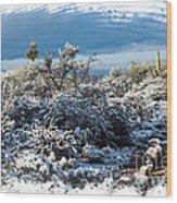 White Winter In The Desert Of Tucson Arizona Wood Print