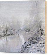 White Winter Wood Print