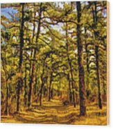 Whitebog Village Woods In New Jersey  Wood Print