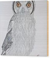 Whitefaced Owl Wood Print