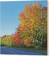 Whitefish Bay Scenic Byway Wood Print