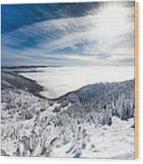 Whitefish Inversion Wood Print