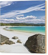 Whitehaven Beach Wood Print by Shannon Rogers
