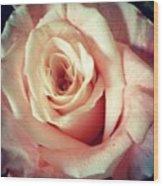 #whiterose #rose #flower #bloom #pretty Wood Print