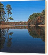 Whites Pond Wood Print