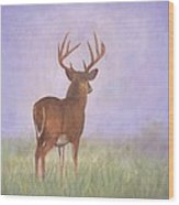 Whitetail Wood Print by David Stribbling