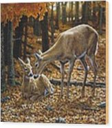 Whitetail Deer - Autumn Innocence 2 Wood Print