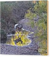 Whitetail Deer Mirrored Wood Print