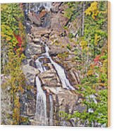 Whitewater Falls Vertical Wood Print