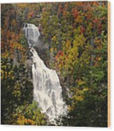 Whitewater Falls With Fall Leaves - North Carolina Waterfalls Series Wood Print