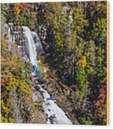 Whitewater Falls With Rainbow Wood Print