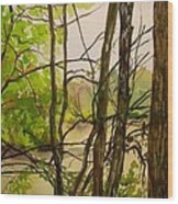 Whitewater Memorial State Park Wood Print
