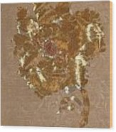 Whitman's Reach Detail Wood Print by Dan A  Barker