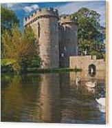 Whittington Castle Wood Print