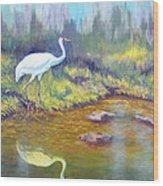 Whooping Crane - Searching For Frogs Wood Print