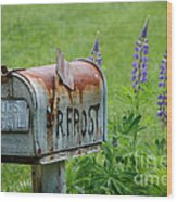Whose Mailbox This Is I Think I Know Wood Print