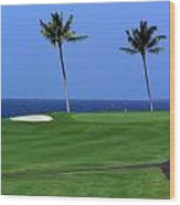 Why Would You Golf In Hawaii Wood Print
