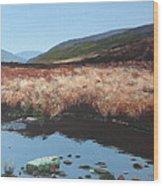 Wicklow Bogscape Wood Print