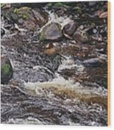 Wicklow River # 1 Wood Print